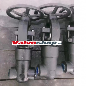HP FORGE STEEL VALVE- GATE GLOBE CHECK VALVE