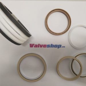 LIPSEAL and O-RING